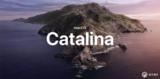 最新公测版发布, macOS Catalina 迎来新的起点