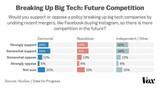近三分之二的美国人支持将科技巨头拆分?