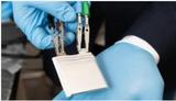 研究人员开发弹性固体电解质 推动新一代锂离子电池发展