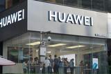 华为正与LGD秘密合作,推支持5G搭载鸿蒙系统OLED屏电视?