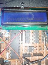 51单片机多路DS18B20测温显示并读取序列号