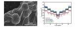 中国研究人员改良TNOx/HRGO混合负极 提高锂离子<font color='red'>电池</font>性能