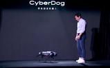<font color='red'>小米</font>进军机器人领域:推出仿生四足机器人 售价9999元