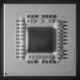 <font color='red'>AMD</font>锐龙5000G APU核心裸片首曝:180m㎡封装 107亿晶体管