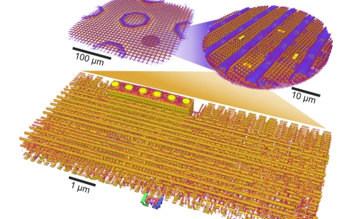 Ptychographic X-ray laminography can scan an entire chip or zoom in on a particular spot to reveal its circuits.