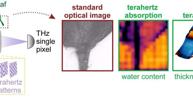 黑科技,前瞻技术,太赫兹辐射摄像头,智能汽车THz摄像头,物体内部高清图像